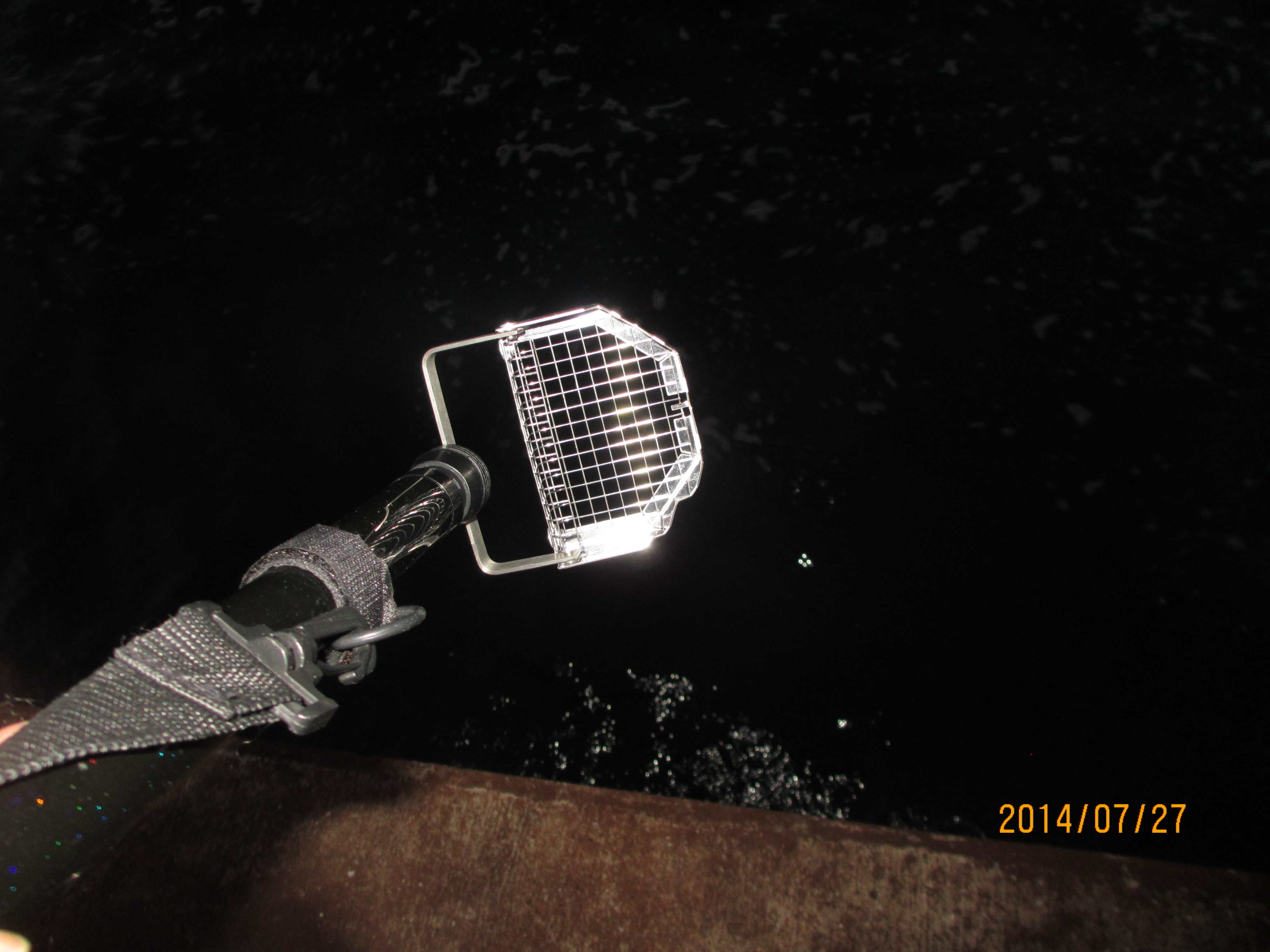 南芦屋浜でかぶせ釣りの可能性